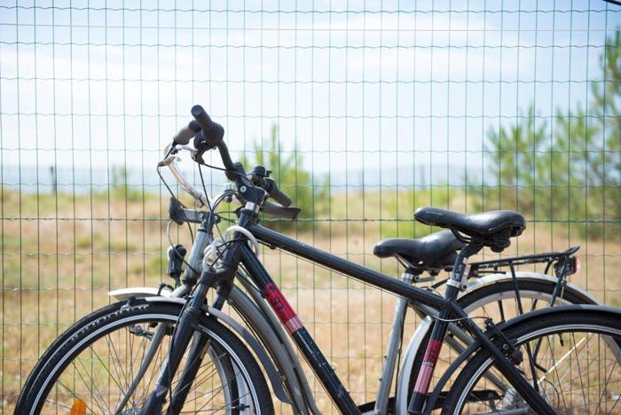 Des pistes cyclables près du camping