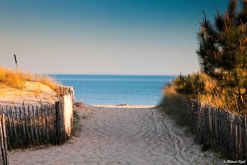 la plage de la Tranche sur mer en Vendée
